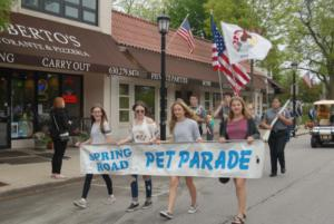 Spring Road Business Association - Pet Parade 2018 - 03